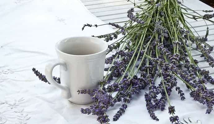 Lavender next to a white coffee cup