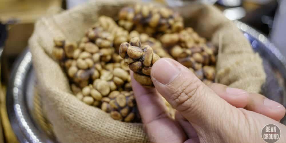 what is kopi luwak coffee